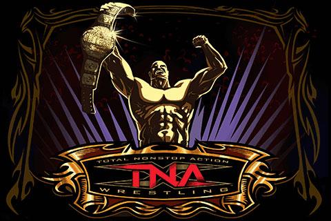 iPhone Gems: Eliss, 3D Brick Breaker, Vans SK8, Wolfenstein 3D, TNA Wrestling, Mega Man II + More 21