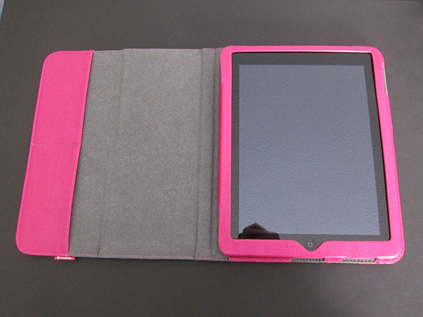 First Look: SwitchEasy Canvas for iPad