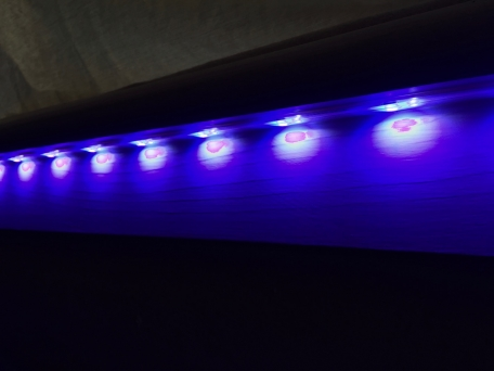 Philips light strip essential
