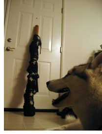 Backstage: Me, my dog, and my didgeridoo (aka The Explanation)