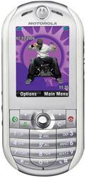 Motorola to drop iTunes in next ROKR phone
