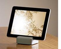 iPad Mix: Modgrain, WedgePad, iGear, ClayWare, EasyStand