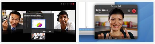 Skype Limited Skype 5.2