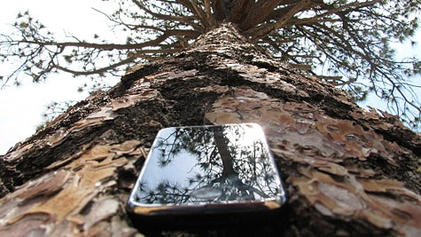 Photo of the Week: iPhone in California