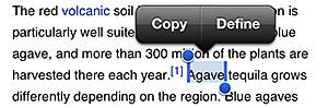 Getting a word definition in iOS