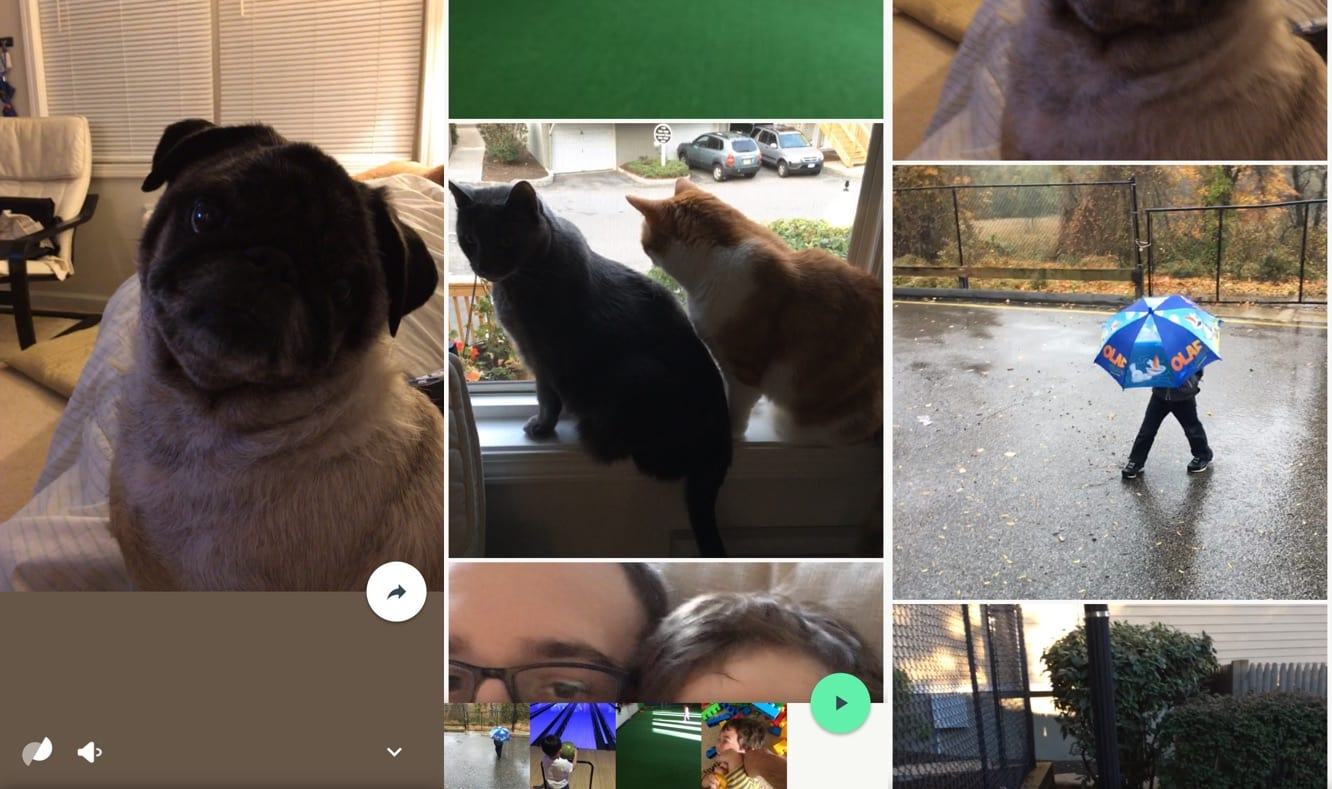 Google's new Motion Stills app lets iOS users make GIFs out of Live Photos