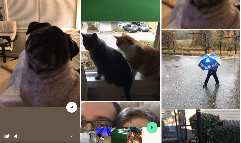 Google Photos 2.0 enhances Live Photos support