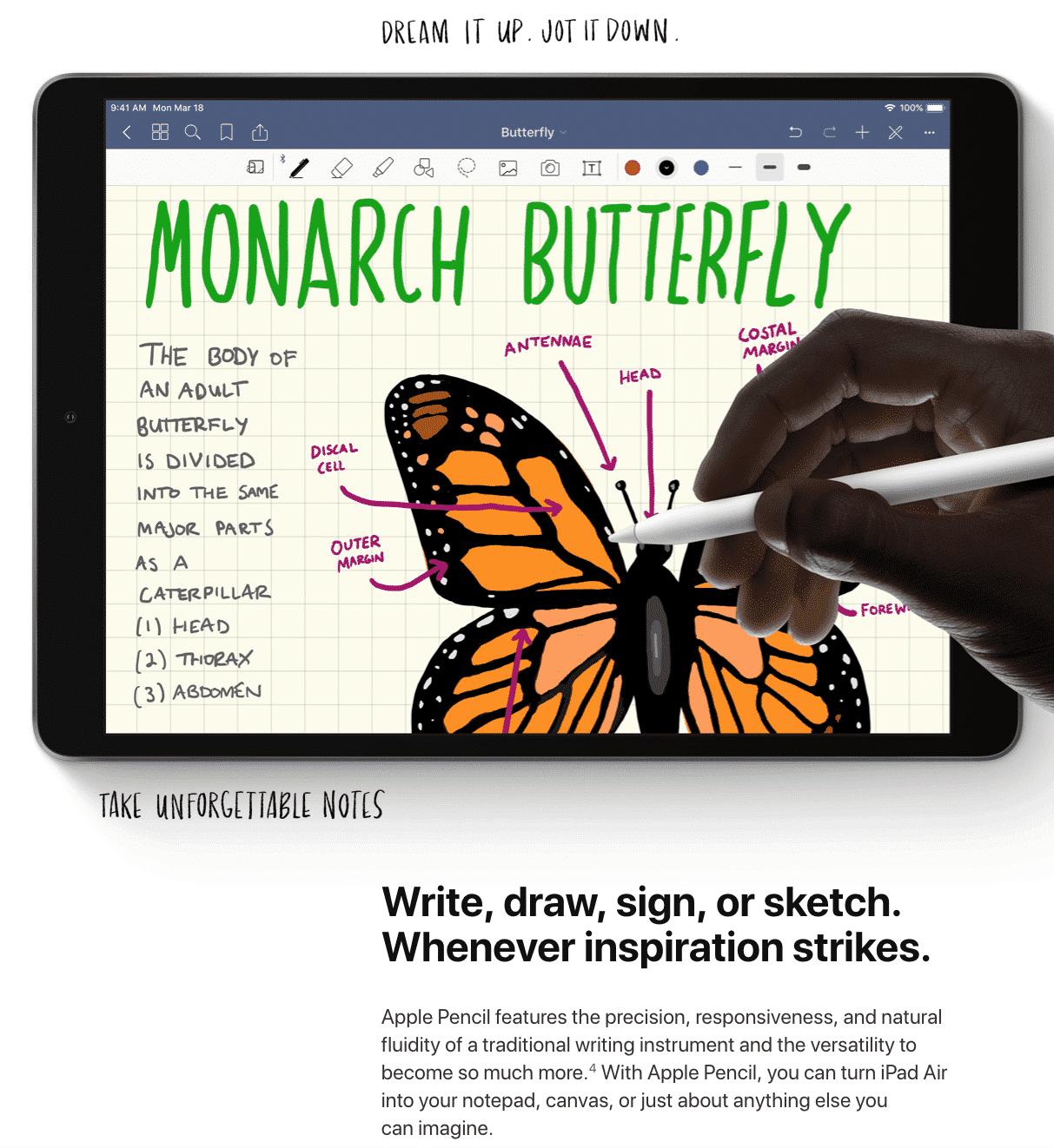 iPad Air Image 9