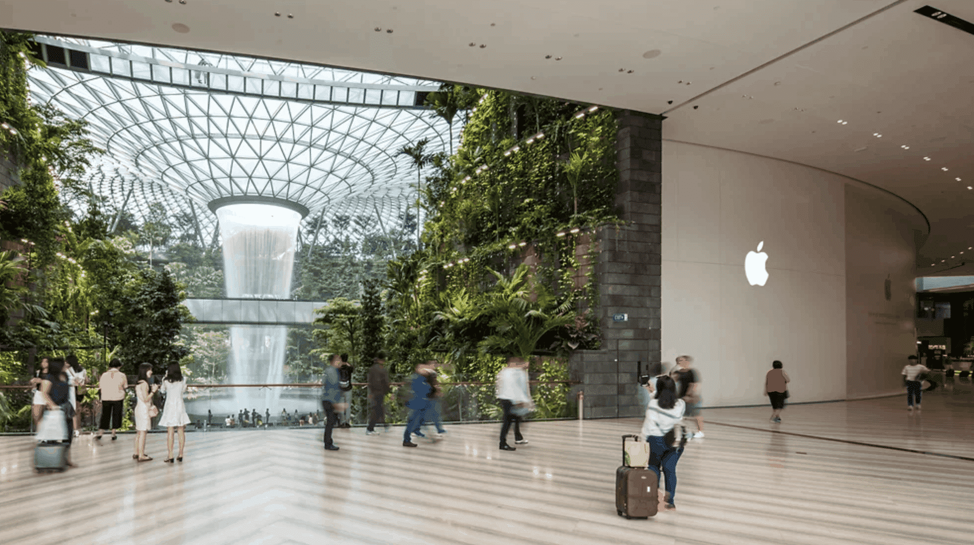 Apple Jewel Changi Airport in Image