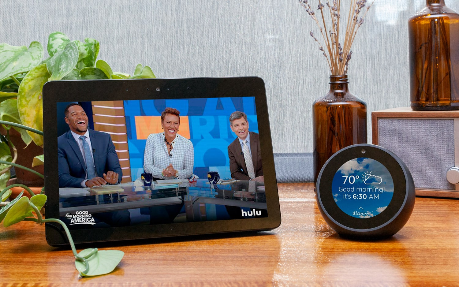 Difference Between the Amazon Echo Spot and the Echo Show: Which Should You Purchase?
