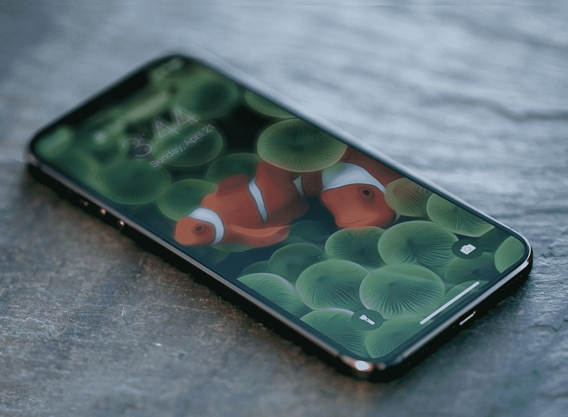 iPhone 12 Pro leak