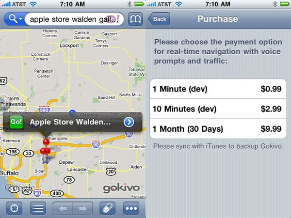 Editorial: In-App Purchasing Shame – $1-per-Minute GPS is Here, is Psychic Friends Next?