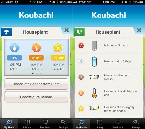Review: Koubachi Wi-Fi Plant Sensor Outdoor