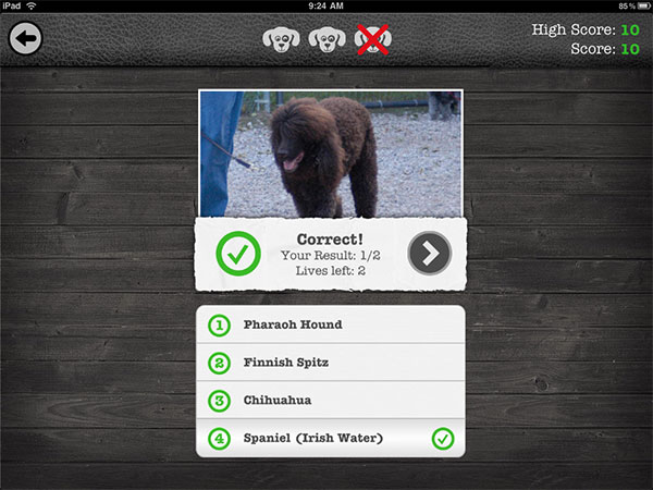 iPhone + iPad Gems: Friendly, iKnow Dogs HD+, A to Z with Moose + Zee, Pro HDR + Top 100s by Year