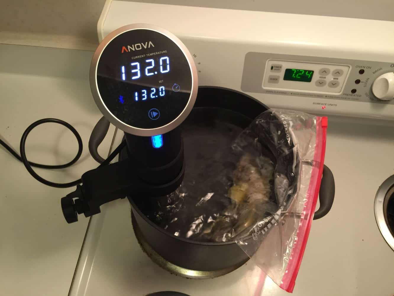 Review: Anova Culinary Precision Cooker