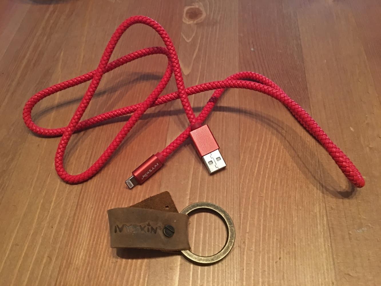 IvySkin Reel Lightning-to-USB Cable