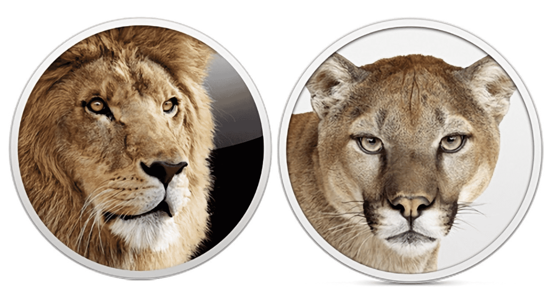 Mac OS X Mountain Lion and Lion