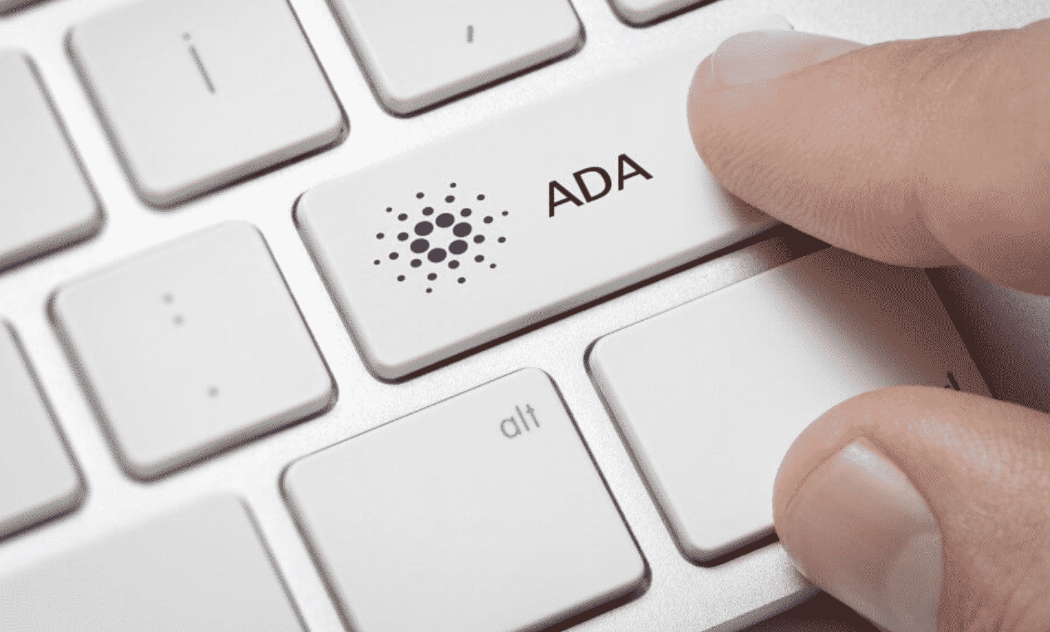 ADA Staking Calculator: Everything You Need to Know