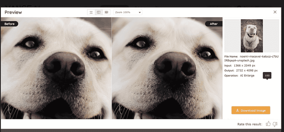 How to Enhance Image Quality with Vance AI